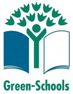 shanahoe-school-green-flag-logo